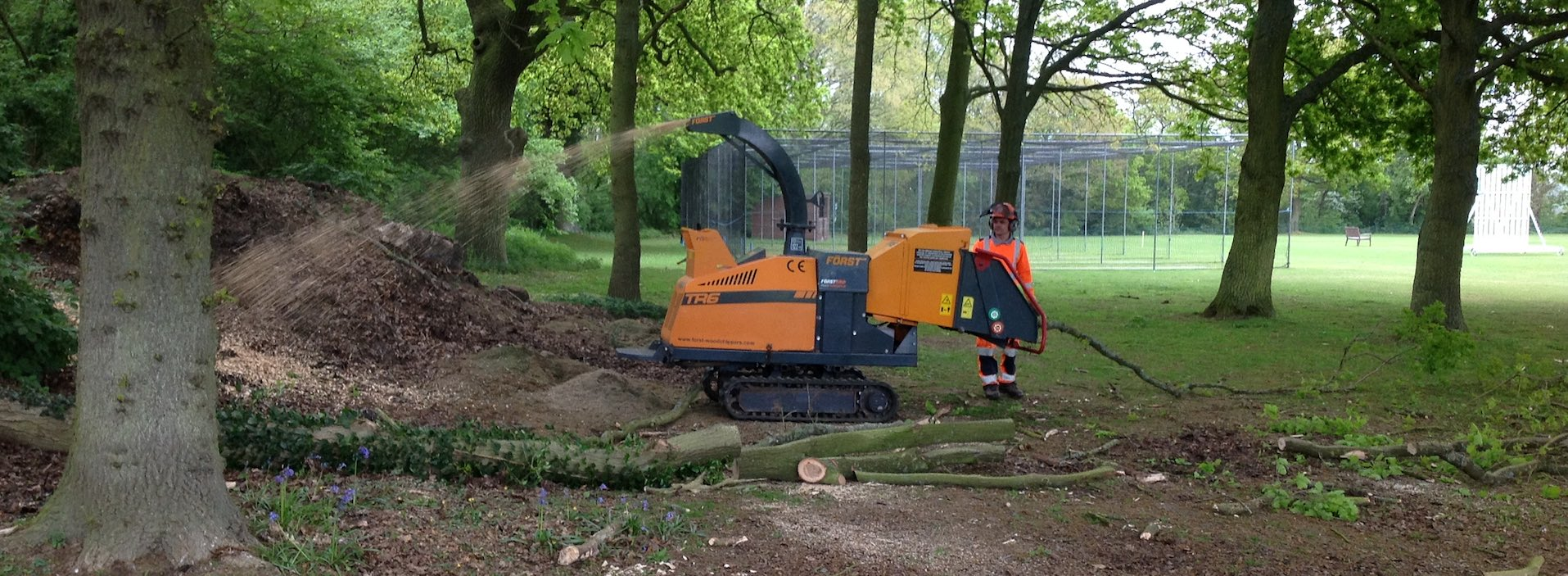 Digger Working on Tree