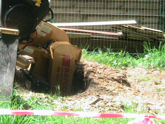 Image Depicting Stump Grinding in Oxford
