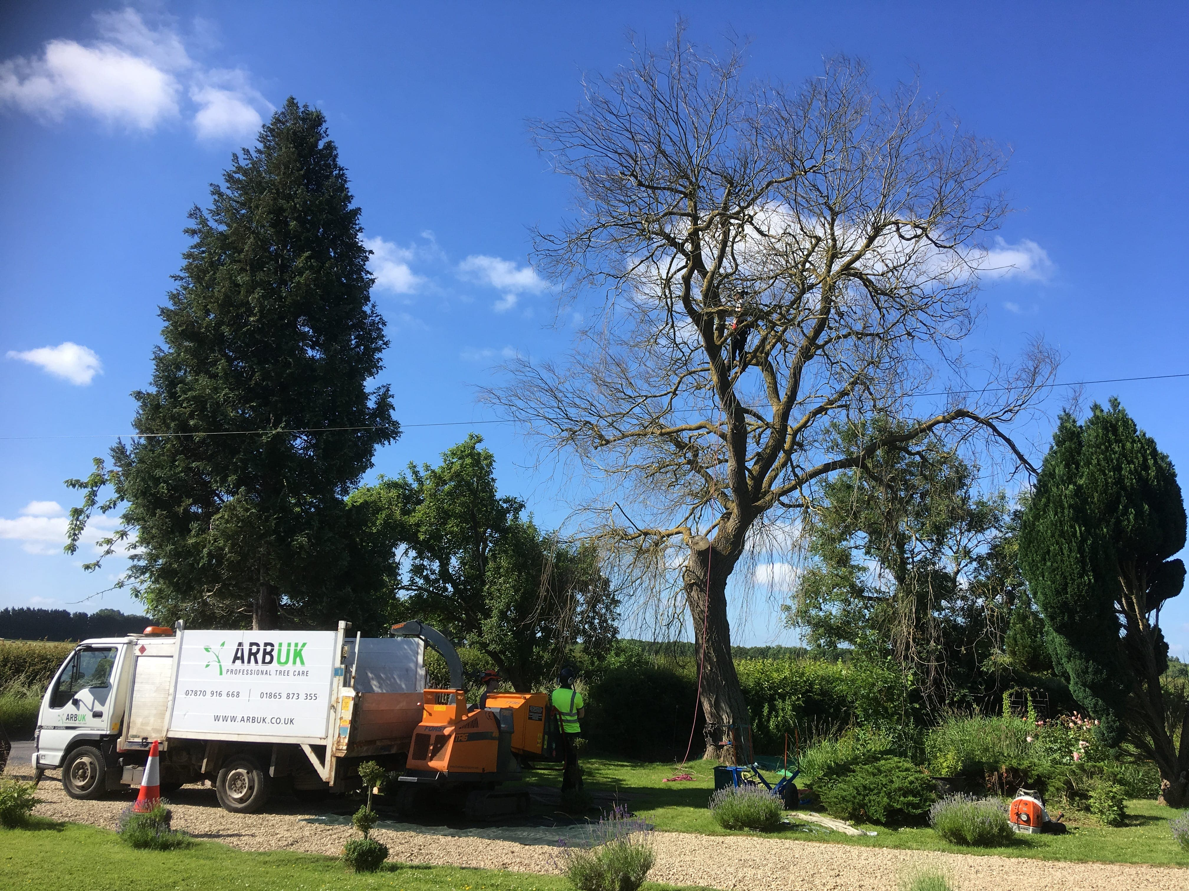 Tree Surgeons in Oxford